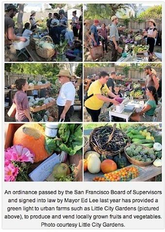 San Francisco Legitimizes Urban Farming — City Farmer News | Vertical Farm - Food Factory | Scoop.it