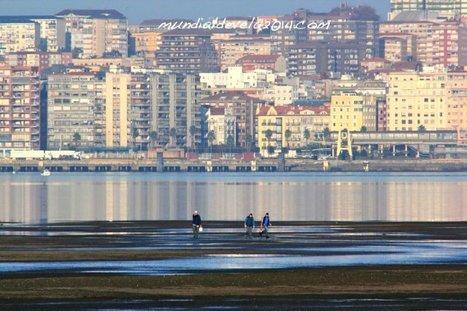 Galeria de imagenes. Ecosistemas Naturales de la Bahía #Santander. Arenales. #Cantabria | MDV 2014 | Scoop.it