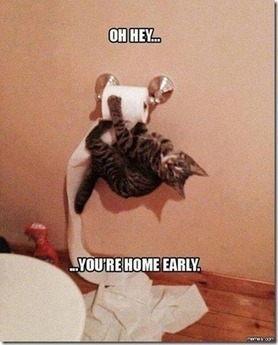 Oh… you are home early | Funny Blaster | Scoop.it