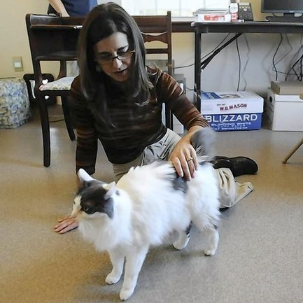 After A Decade Of Planning, Fund-Raising, A New Kind Of Animal Shelter | Animals R Us | Scoop.it