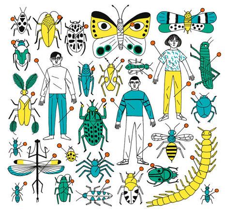 Pourquoi les insectes n'entrent pas dans notre univers moral - Télérama (abonnés)   Variétés entomologiques   Scoop.it