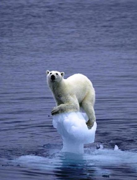 Global Warming is now Climate Change? What changed?   Global Warming - Attacking a World in Disguise   Scoop.it