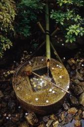 Magazine | Vertical garden | Scoop.it