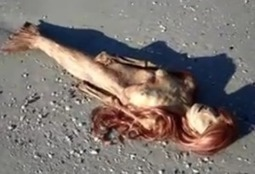 Dead Florida Mermaid: YouTube Video Attacked in Rebuttal as Fake - The Epoch Times | mermaids | Scoop.it