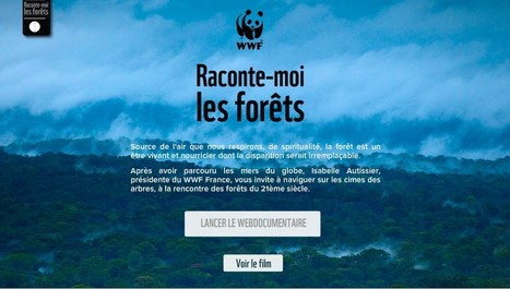 """Raconte-moi les forêts"" 