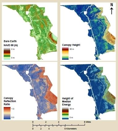LiDAR Vegetation Mapping in Coastal Regions | TIG | Scoop.it