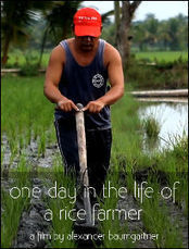 One Day in the Life of a Rice Farmer | Childs Play - Permaculture for Kids | Scoop.it