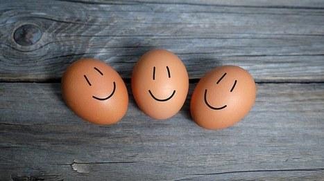 Les jeunes et la réussite : 92% d'optimistes | Osez Oser | Scoop.it
