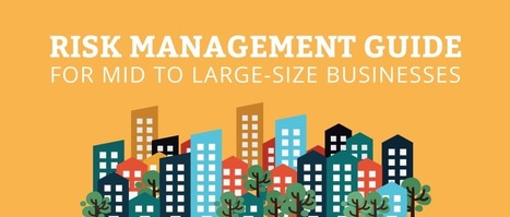 Risk Management Guide For Mid to Large-Size Businesses | Infinit-O Articles | Scoop.it