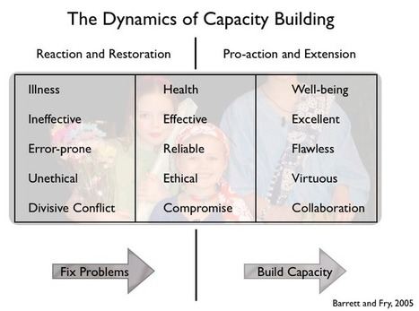 The Dynamics of Capacity Building | PRN Leadership : Together We Learn | Research Capacity-Building in Africa | Scoop.it