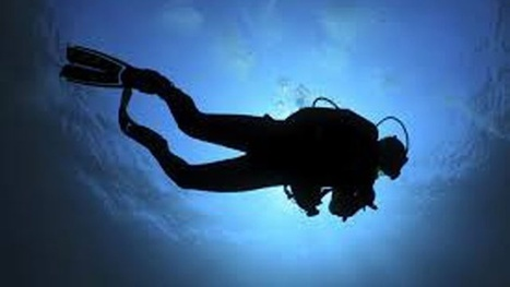 Scuba diving shop in Doral issued fake certifications, authorities say - Local 10 | Chicago Street Smart Real Estate, News and Fun Info | Scoop.it