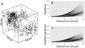 PLOS ONE: Spatial Ecology of Bacteria at the Microscale in Soil | Geomicrobiology | Scoop.it