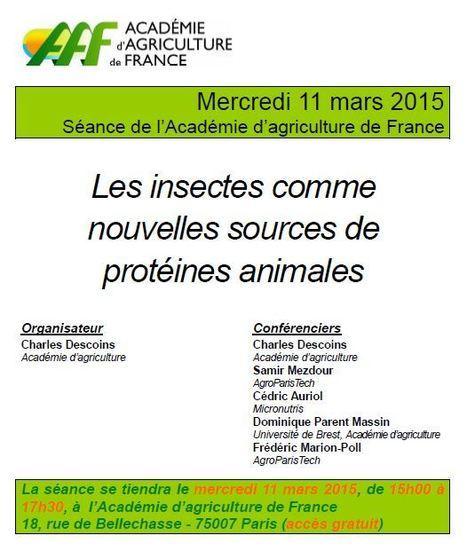 """Plaquette de présentation de la séance """"Les insectes comme nouvelles sources de protéines animales""""   Insect Archive   Scoop.it"""