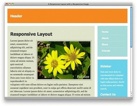 Responsive Web Design: 5 Handy Tips | Having Fun with Web Design & Blogging | Scoop.it