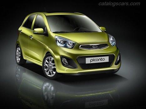 KIA Picanto HatchBack in Dubai for rental | players car rental | Scoop.it