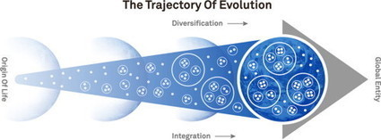 The direction of evolution: The rise of cooperative organization | operationalizing complexity | Scoop.it