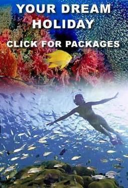 Andaman Nikobar Tour | North india tour packages | North India holidays packages | Tourist places in north india | Scoop.it