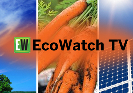 EcoWatch TV Featuring New Fracking Documentary + Filmmakers Joshua Pribanic and Melissa Troutman | EcoWatch | Scoop.it