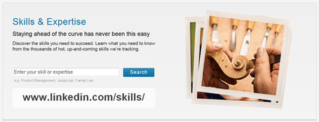 Skills | LinkedIn | E-Learning and Online Teaching | Scoop.it