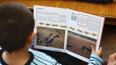 Läsa och skriva - SPSM   ICT in Pree-school, iPads in Pree-school   Scoop.it