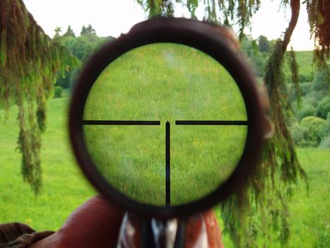 3 Mistakes People Make that End up Ruining their Shots - Sportsman Gun Safes   Gun Safes   Scoop.it