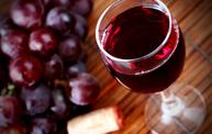 Tast de vi novell al celler de Cal Garrigosa 2013 | Wine & Wineries in Catalonia | Scoop.it