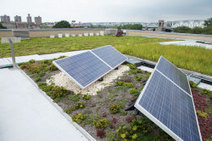 Green Roofs Improve Solar Panel Effciency - EBN: 21:12 | Vertical Farm - Food Factory | Scoop.it