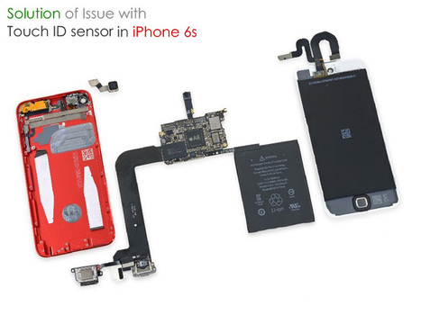 Issue occur with Touch ID sensor in iPhone 6s - Proforbes | Entertainment | Scoop.it
