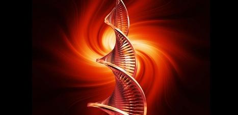 Coronary Artery Disease Risk, Non-HDL Cholesterol Lower in Europeans with Rare ASGR1 Mutations   Genetics - GEG Tech top picks   Scoop.it