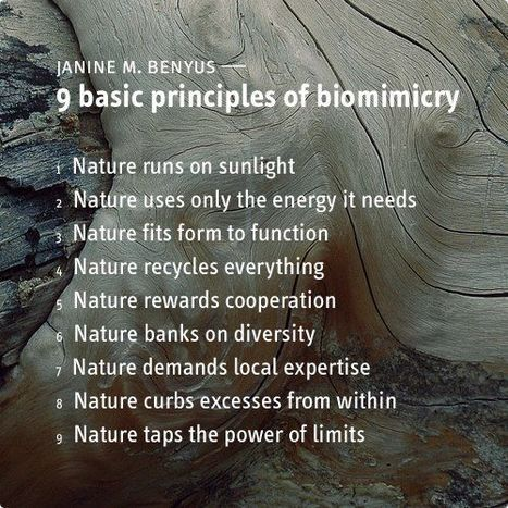 9 basic principles of biomimicry J. Benyus | Generative Systems Design | Scoop.it
