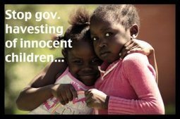 Black British Foster Care Children | Eugenics | Scoop.it