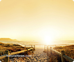 Morning sunlight exposure helps with weight loss - Natural News | Health & Wellness | Scoop.it