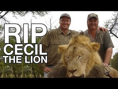Do We Care More About a Dead Lion, or Dead Children?: Information Clearing House - ICH | Global politics | Scoop.it