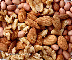 Consumption of tree nuts reduces women's risk of pancreatic cancer | Telcomil Intl Products and Services on WordPress.com