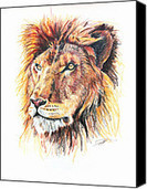 Adolescent Lion Drawing by Marcin and Dawid Witukiewicz - Adolescent Lion Fine Art Prints and Posters for Sale | Our Art | Scoop.it