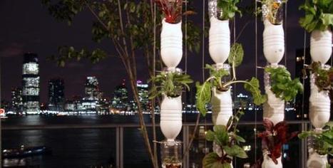 L'agriculture urbaine, fertilisée par le numérique | Horticulture urbaine et périurbaine | Scoop.it