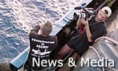 United Press International Report- Asia, with Comments by Captain Paul Watson - Sea Shepherd Deutschland | Dolphins | Scoop.it