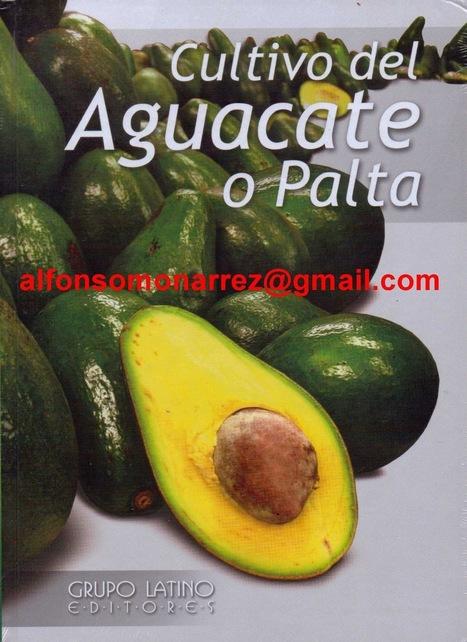 cultivo y explotación del aguacate o palta libro - libros | Aguacate: Persea  americana | Scoop.it