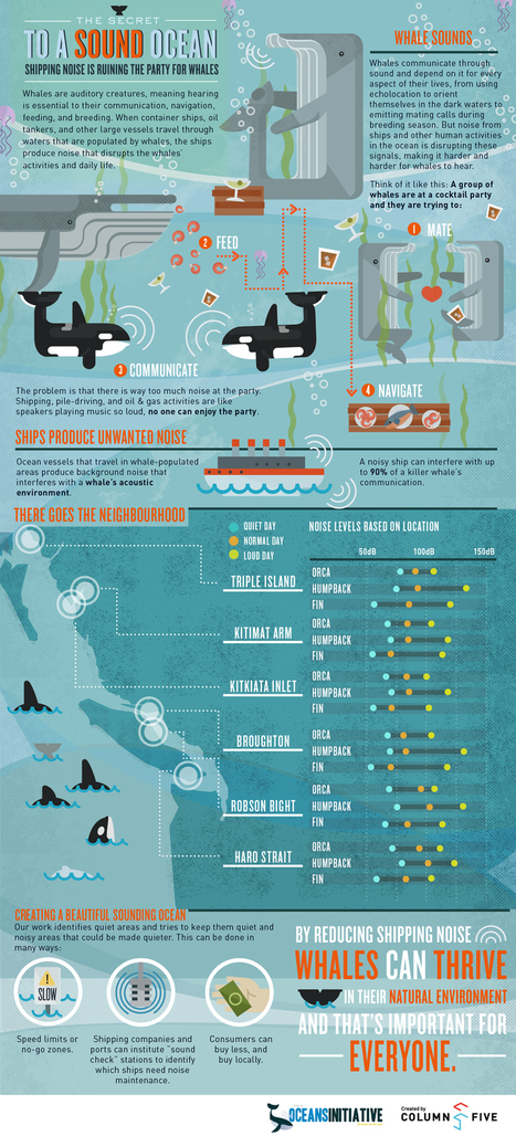 Infographic: The Secret to a Sound Ocean | green infographics | Scoop.it