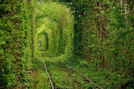 The World's 20 Most Amazing Tunnels (PHOTOS) - weather.com | Adventurous Lives | Scoop.it