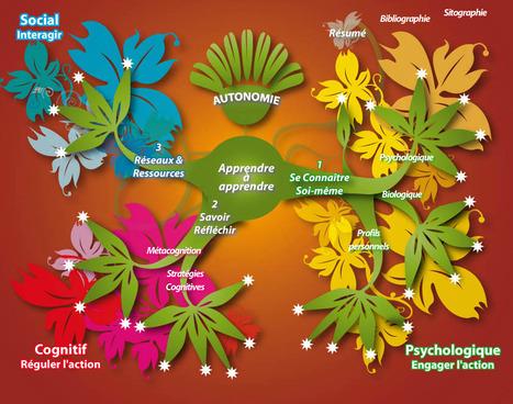 Intégration pédagogique du web social : évaluation des productions | TICE | éducation canada | Scoop.it