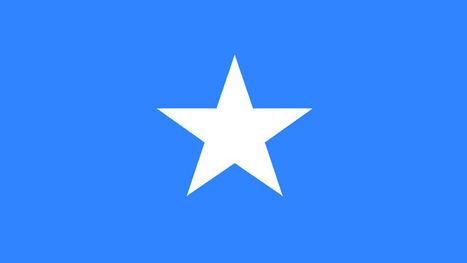 Libyan weapons reach Somali al-Qaida | Saif al Islam | Scoop.it