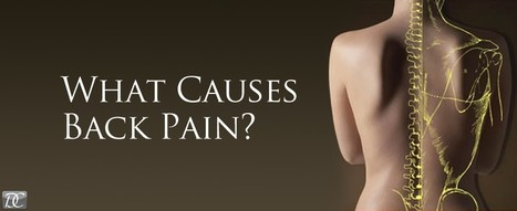 Causes of Low Back Pain   Charlotte Chiropractor   How Chiropractor Can Help You To Get Rid From Pain   Scoop.it