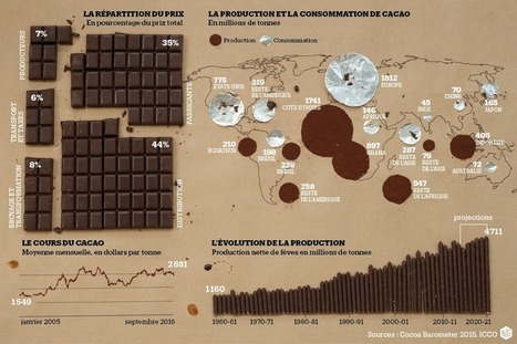 Cacao : la fève monte | LE CIRAD DANS LES MEDIAS - CIRAD IN THE MEDIA | Scoop.it