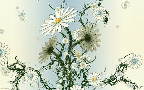 LA MANZANILLA UNA MARAVILLA.(Matricaria chamomilla L. )   ECOLOGIA Y SALUD: Plantas aromáticas y medicinales.   Scoop.it
