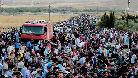 FBI Confirms That Donald Trump Was RIGHT About Syrian Refugees! WHOA!   Economic & Multicultural Terrorism   Scoop.it