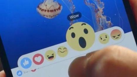 Info, vidéos, loisirs: ce que font vraiment les Français sur les réseaux sociaux | Je suis Community Manager | Scoop.it