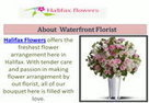 Flower Delivery Services In Halifax : Free Download & Streaming : Internet Archive | Waterfront Florist | Scoop.it