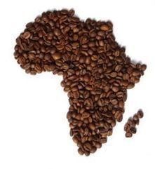 El hombre y el café: dos historias paralelas | Educacion, ecologia y TIC | Scoop.it