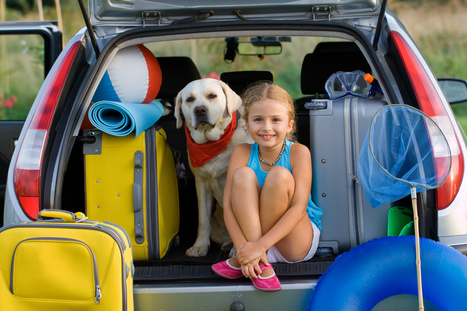 Warm Temperatures and Travelling With Pets | Travel News | Scoop.it